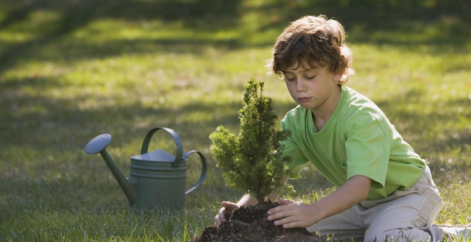 Come educare i bambini al rispetto della natura