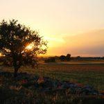 Un villaggio nella memoria: preservare i luoghi per preservare le comunità