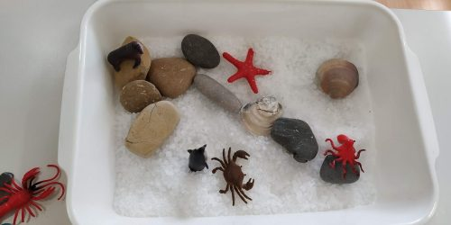 In questa foto vi mostriamo un piccolo mondo marino, fatto con del sale grosso, dei sassi di colore e di grandezza differente e degli animali marini. Una variante divertente può essere realizzata utilizzando l'acqua.