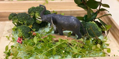 Per questo altro piccolo mondo, è stato utilizzato un broccolo, della pasta di sale con colorante alimentare, fiori e erbetta colti in giardino.