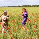 Imparare dalla natura: tornare a scuola con l'outdoor education